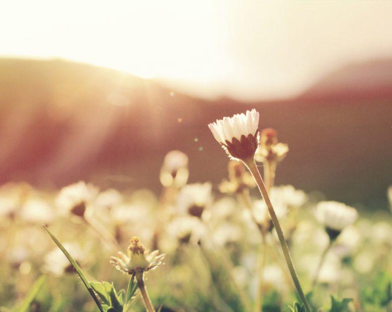 spring-rheumatoid-arthritis-symptoms